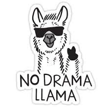 NoDramaLama